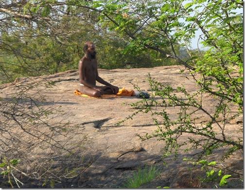 Sadhu meditating