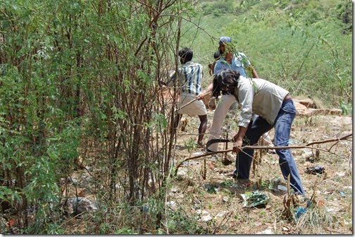 cleaning the bush. so no more littering on here planting will be done soon by morning