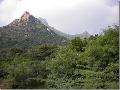 20091102_863