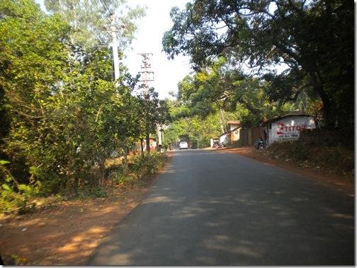 20100106_4095