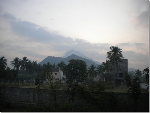 20100203_4717