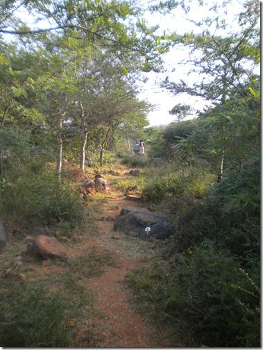 20100203_4879