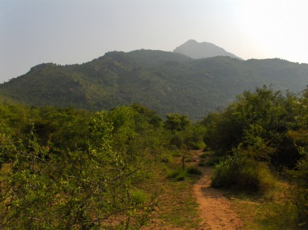 Arunachala from Kattu Siva area Inner Path