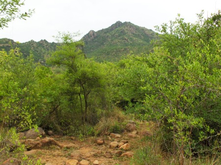 Arunachala from SW Inner Path