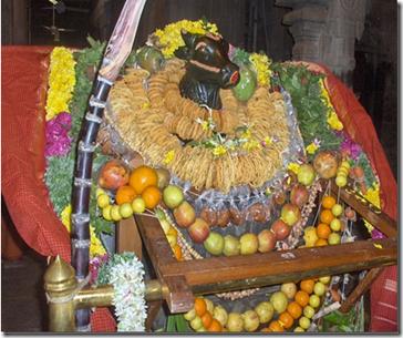 Cow Pongal at Ramanasramam