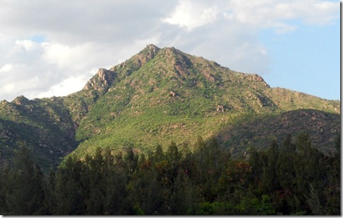 Holy Arunachala Mountain