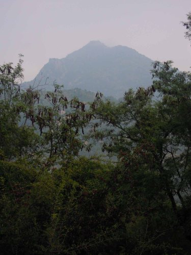 Arunachala Christmas Morning 2012
