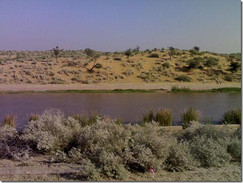 800px-Indira_Gandhi_Canal near Bikaner