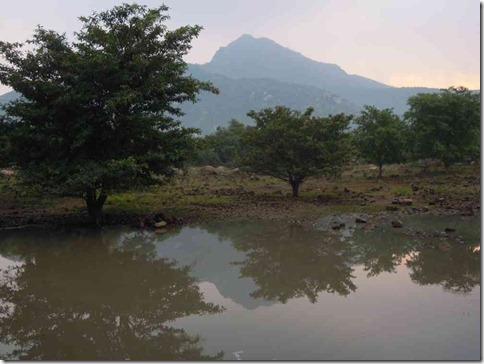 Arunachala reflected in Sonagiri tank 18-10-2012_01